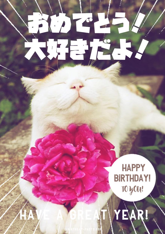 猫の表情が可愛い誕生日画像