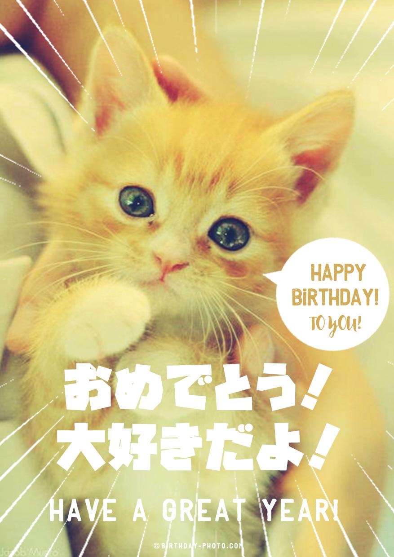 猫好きの友達が泣いて喜ぶお誕生日おめでとう画像